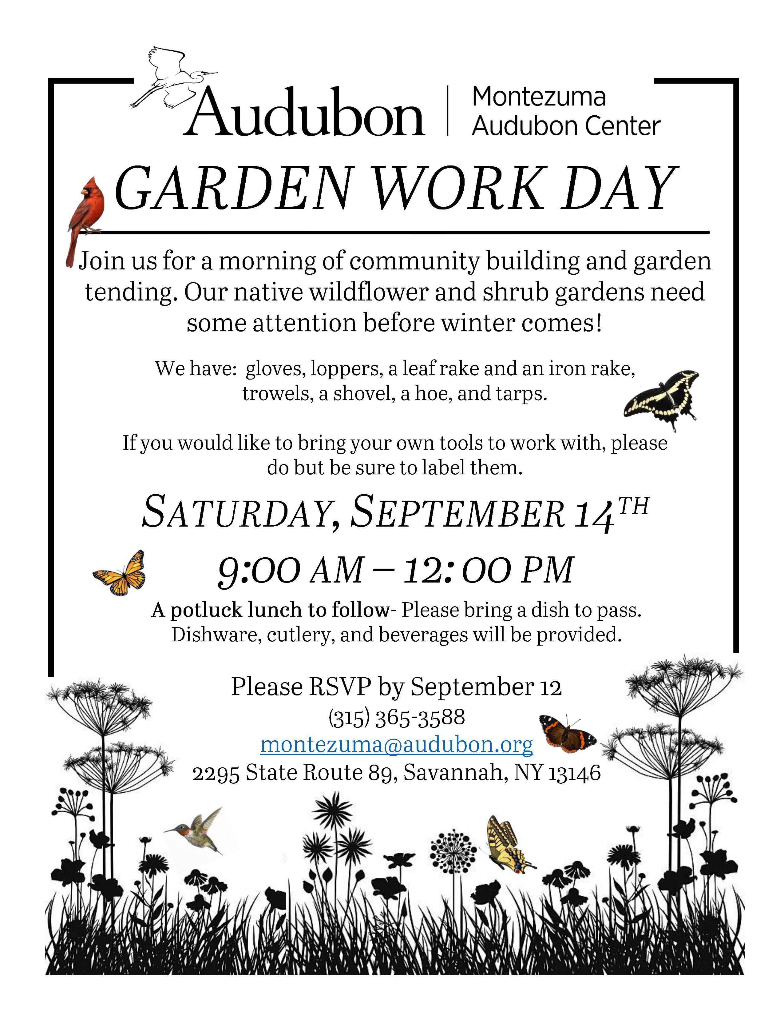 native wildflowers, butterfly, garden, montezuma, audubon, volunteer
