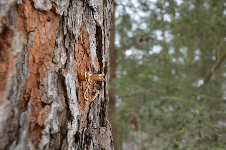 Audubon Vermont Golden Tap