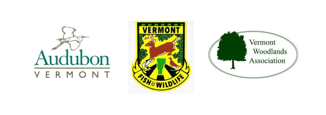 wildlife photography workshop logos